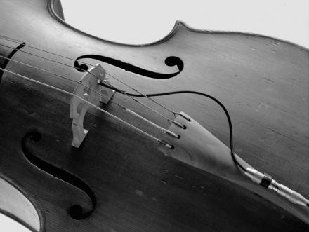 cello.preview