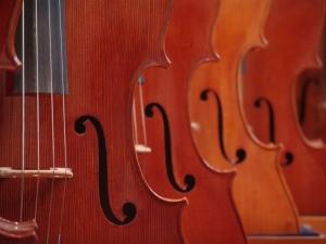 violins-1390358-m
