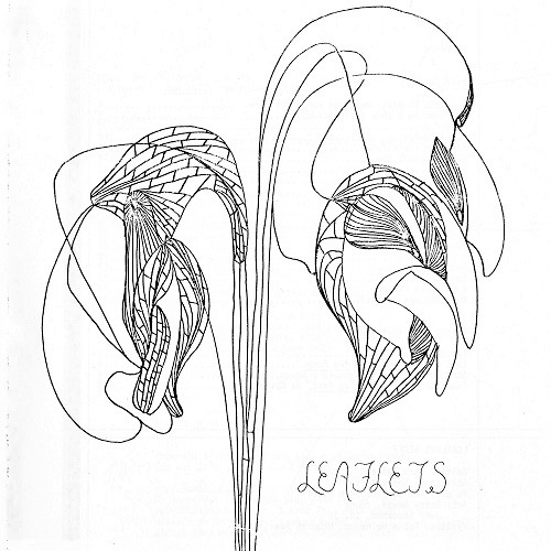 Cover of the 1981 issue of Leaflets, showing an artistic line drawing of two drooping flowers.