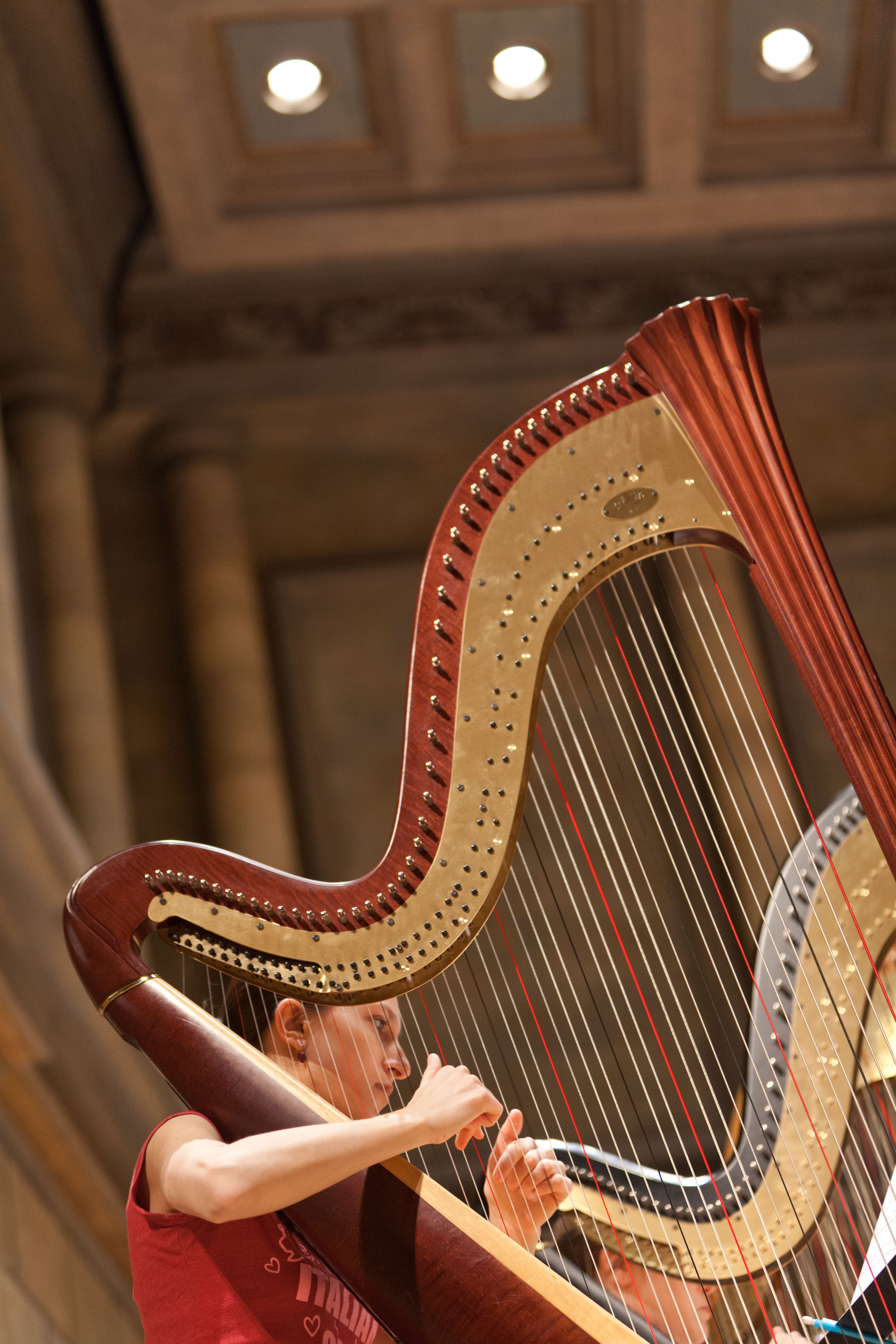 Nan Gullo Bassetts Passion For Harps Modern And Historical